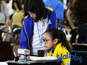 Robotica Colegio Wallaby