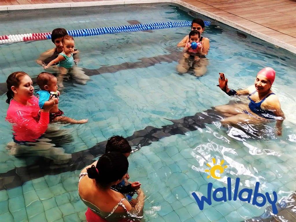 Natación bebes Colegio Wallaby